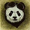 Green Panda Web Development Service very cute panda